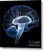 Human Brain Complexity Metal Print