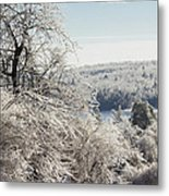 Ice Storm - 2013 Metal Print by Jim Walker
