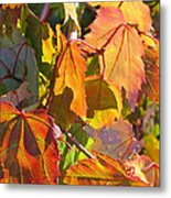 Illumining Autumn Metal Print