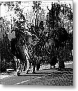 Indian Women Carrying Heavy Loads Along The Highway Metal Print