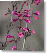 Into The Flower Metal Print