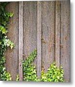 Ivy Wall Frame Metal Print