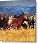 Joe's Horses Metal Print