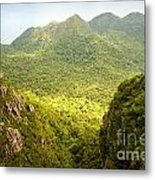 Jungle Landscape Metal Print
