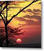 Kenyan Sunset Metal Print