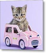 Kitten In Pink Car Metal Print