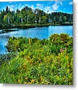 Lake Abanakee In The Adirondacks Metal Print by David Patterson