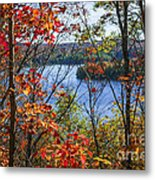 Lake And Fall Forest Metal Print