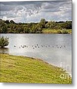 Lake  Geese And Trees Metal Print
