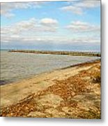 Lake Ontario Shoreline Metal Print