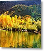 Lake Reflection In Fall  Metal Print