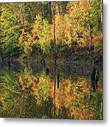 Lake Wedowee Alabama Metal Print