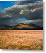 Landscape Of Windy Wheat Field In Front Of Mountain Range With D Metal Print