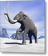 Large Mammoth Walking Slowly Metal Print by Elena Duvernay