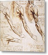 Leonardo: Anatomy, 1510 Metal Print