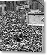 Letchworth Village Cemetery Metal Print