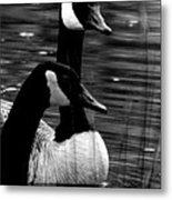 Lila Goose And The King 1b Metal Print