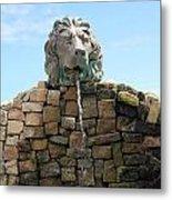 Lion Water Fountain. Metal Print