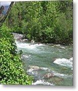 Little Susitna River  Metal Print