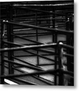 Livestock Market - In The Peak District In Great Britain Metal Print