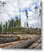 Logpile At A Clear Cut Area Metal Print