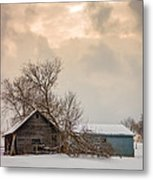 Loneliness Metal Print