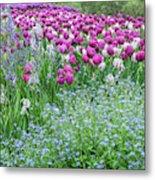 Longwood Gardens, Spring Flowers Metal Print