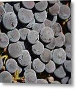 Lorimar Grapes Metal Print