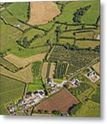 Loughgall Orchards, Armagh Metal Print