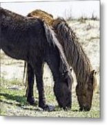 Lunch With A Friend  1220 Metal Print