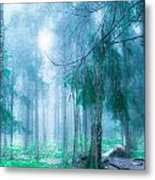 Magic Forest 5 Metal Print