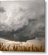 Marshmallow - Bubbling Storm Cloud Over Wheat In Kansas Metal Print