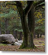 Megalithic Tombe Metal Print by Frits Selier
