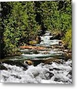 Mount Rainer Metal Print