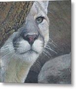 Mountain Lion Painterly Metal Print