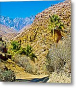 Mountain Peaks From Lower Palm Canyon Trail In Indian Canyons Near Palm Springs-california Metal Print