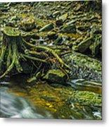Mountain Stream Metal Print by Jaroslaw Grudzinski
