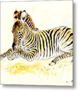 Mountain Zebra Metal Print