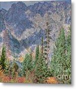 Mountains And Trees Metal Print