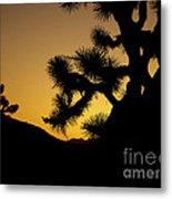 New Photographic Art Print For Sale Joshua Tree At Sunset Metal Print