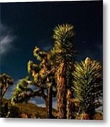 Night Desert Metal Print