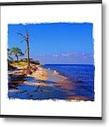 North Florida Beach Metal Print