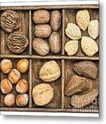 Nuts In Rustic Wooden Box Metal Print