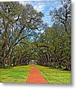 Oak Alley 3 Metal Print