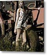 On The Farm At Dusk Metal Print