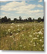 On The Summer Meadow. Russia Metal Print