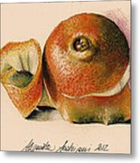 Orange..navel Metal Print