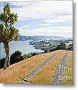 Otago Peninsula Coastal Landscape Dunedin Nz Metal Print