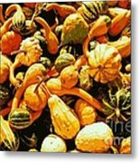 Out Of My Gourd Metal Print