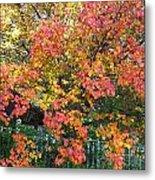 Pallette Of Fall Colors Metal Print